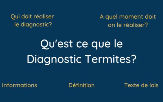 Qu'est ce que le Diagnostic Termites_